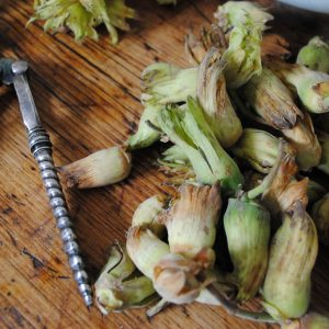 Green Kentish cobnuts close up nut crackers