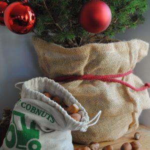500g – 1Kg: Dehusked Gunslebert Cobnut Gift Bag