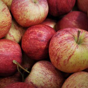 Gala Apple Roughway Farm