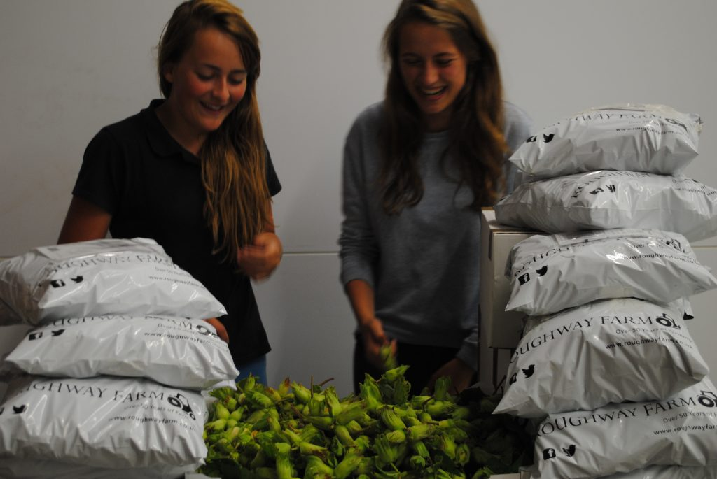 Natural Cobnut Packing