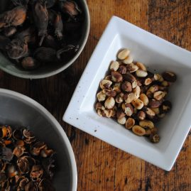 Preparing cobnuts roasting and removing skins