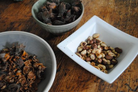 Dehusked, cracked and roasted cobnuts on a wooden table