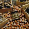 Boxes of handmade Cobnut Dukkah