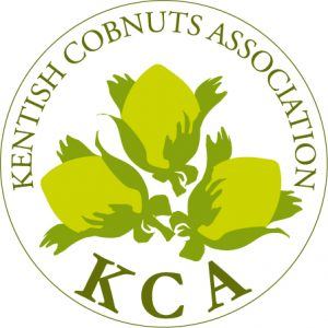 Kent Cobnut Association (KCA) Logo