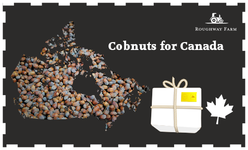 Cobnuts for Canada