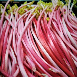 Fresh forced Kentish Rhubarb