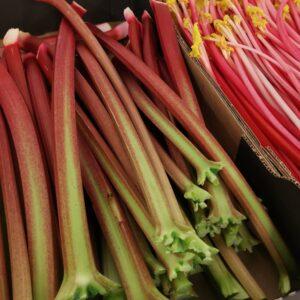 Fresh Rhubarb 1kg-10Kg